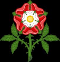 Tudorrose